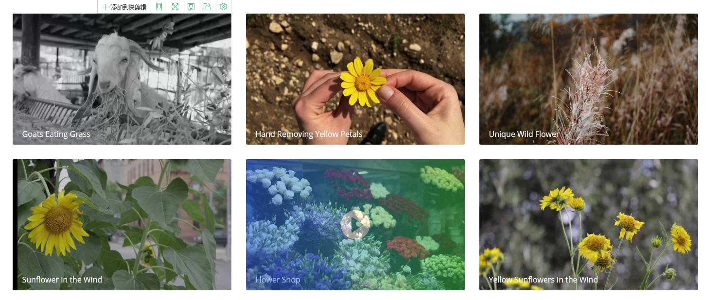 抖音用高清素材图片分享专用页